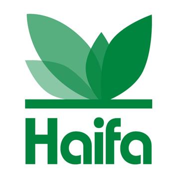 MKP-Haifa-Kim-nong