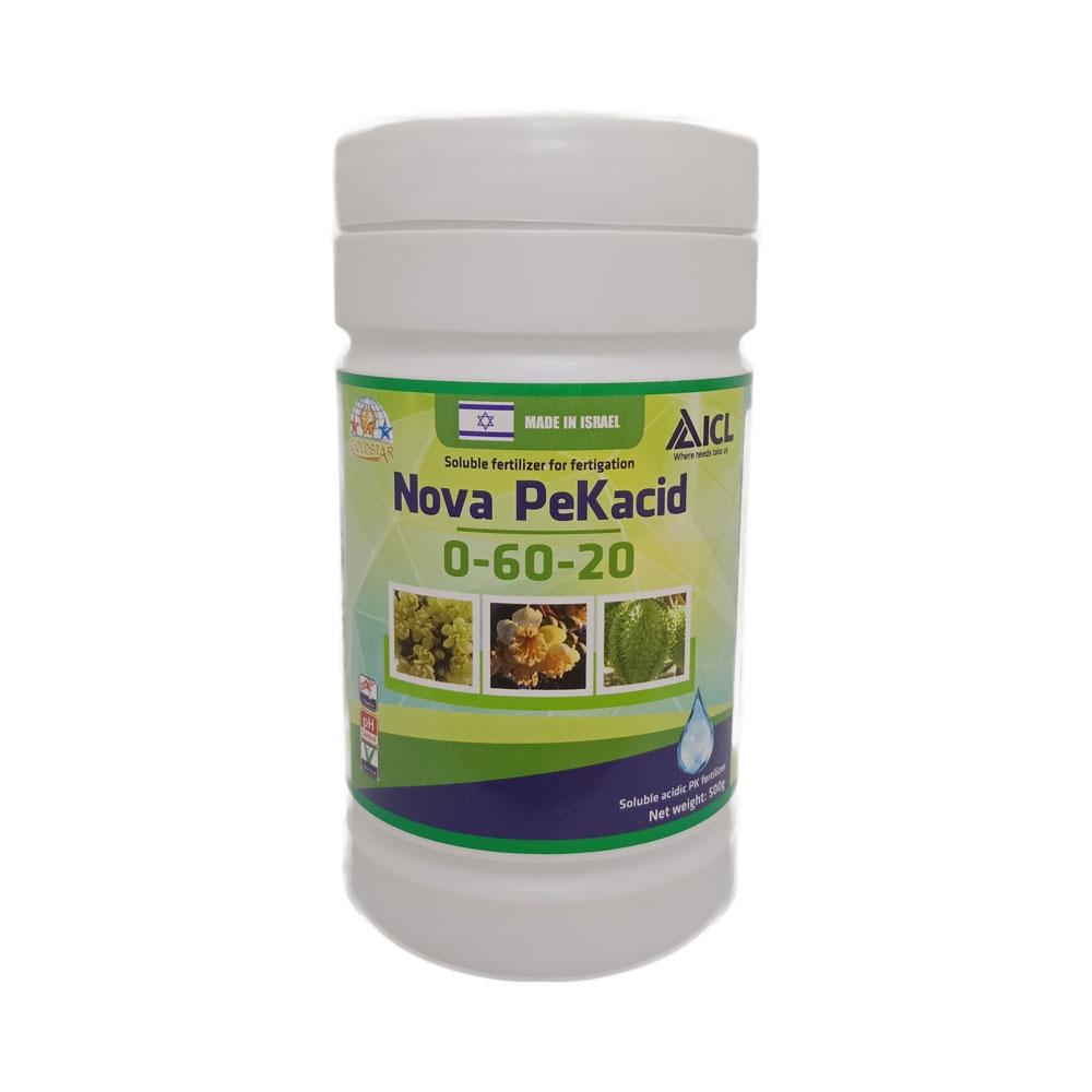 pekacid-kimnonggoldstar-1
