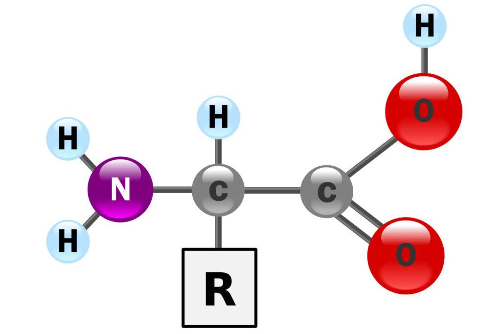 phan-bon-la-amino-kim-nong-anh2